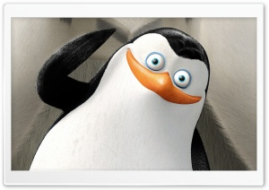 Private Penguins of Madagascar HD Wide Wallpaper for Widescreen