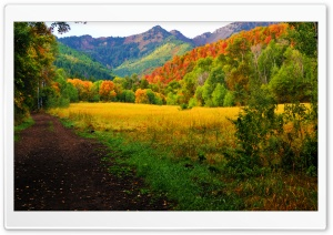 Provo Canyon - Fall Colors HD Wide Wallpaper for Widescreen