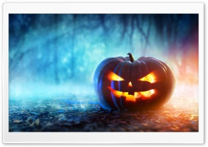 Pumpkin Ultra HD Wallpaper for 4K UHD Widescreen desktop, tablet & smartphone