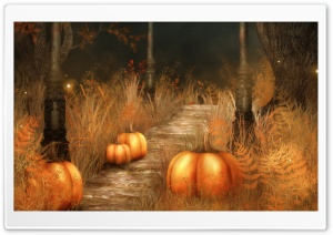 Pumpkins   Halloween Ultra HD Wallpaper for 4K UHD Widescreen desktop, tablet & smartphone