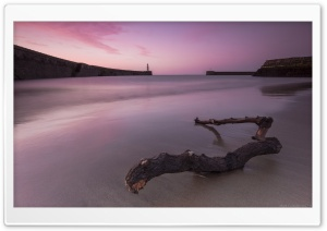 Purple Beach HD Wide Wallpaper for Widescreen