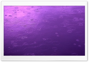 Purple Day HD Wide Wallpaper for Widescreen