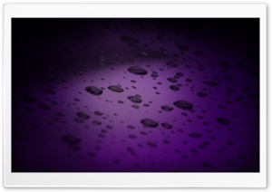 Purple Drops HD Wide Wallpaper for Widescreen