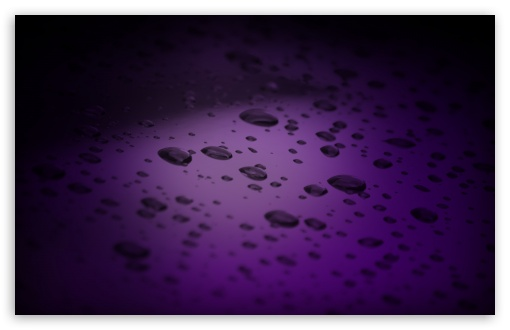 Purple Drops HD wallpaper for Wide 16:10 5:3 Widescreen WHXGA WQXGA WUXGA WXGA WGA ; HD 16:9 High Definition WQHD QWXGA 1080p 900p 720p QHD nHD ; Standard 4:3 5:4 3:2 Fullscreen UXGA XGA SVGA QSXGA SXGA DVGA HVGA HQVGA devices ( Apple PowerBook G4 iPhone 4 3G 3GS iPod Touch ) ; Tablet 1:1 ; iPad 1/2/Mini ; Mobile 4:3 5:3 3:2 16:9 5:4 - UXGA XGA SVGA WGA DVGA HVGA HQVGA devices ( Apple PowerBook G4 iPhone 4 3G 3GS iPod Touch ) WQHD QWXGA 1080p 900p 720p QHD nHD QSXGA SXGA ; Dual 16:10 5:3 16:9 4:3 5:4 WHXGA WQXGA WUXGA WXGA WGA WQHD QWXGA 1080p 900p 720p QHD nHD UXGA XGA SVGA QSXGA SXGA ;