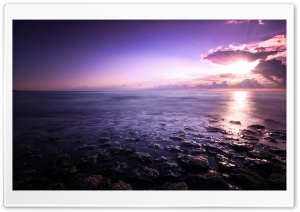 Purple Evening Sky HD Wide Wallpaper for 4K UHD Widescreen desktop & smartphone