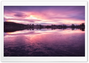 Purple Loch Rusky HD Wide Wallpaper for 4K UHD Widescreen desktop & smartphone