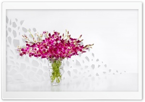 Purple Orchids in a Glass Vase HD Wide Wallpaper for Widescreen