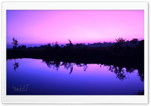 Purple Sky HD Wide Wallpaper for Widescreen