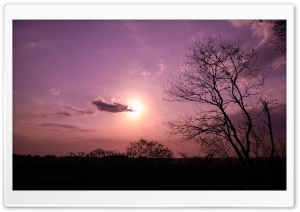Purple Sunset Ultra HD Wallpaper for 4K UHD Widescreen desktop, tablet & smartphone