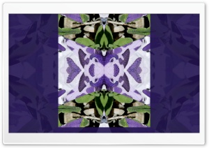 Purple Symmetry with Sage Art