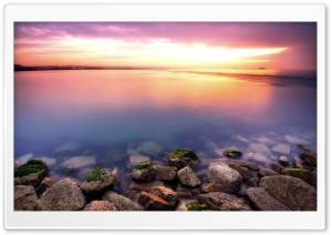 Purple Waters HD Wide Wallpaper for Widescreen