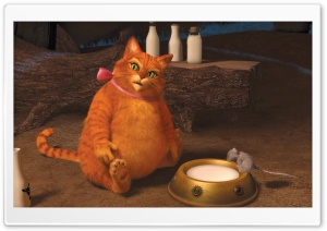 Puss in Boots, Shrek Forever After HD Wide Wallpaper for Widescreen
