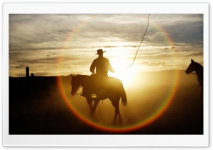 Quarter Horse Ponderosa Ranch Seneca Oregon HD Wide Wallpaper for Widescreen