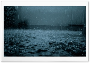 Rain HD Wide Wallpaper for Widescreen