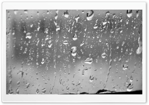 Rain Drops HD Wide Wallpaper for Widescreen