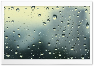 Rain Drops HD Wide Wallpaper for 4K UHD Widescreen desktop & smartphone