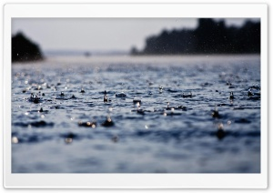 Rain Drops HD HD Wide Wallpaper for Widescreen