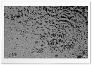 Rain Drops in January HD Wide Wallpaper for Widescreen