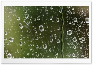 Rain Drops On Window HD Wide Wallpaper for Widescreen