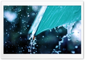 Rain Drops Over Umbrella HD Wide Wallpaper for Widescreen
