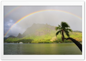 Rainbow Over Cooks Bay, Moorea, French Polynesia HD Wide Wallpaper for 4K UHD Widescreen desktop & smartphone