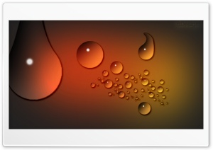 Raindrops Ultra HD Wallpaper for 4K UHD Widescreen desktop, tablet & smartphone
