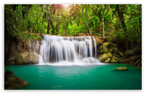 Rainforest Waterfall HD wallpaper for Wide 16:10 5:3 Widescreen WHXGA WQXGA WUXGA WXGA WGA ; HD 16:9 High Definition WQHD QWXGA 1080p 900p 720p QHD nHD ; UHD 16:9 WQHD QWXGA 1080p 900p 720p QHD nHD ; Standard 4:3 5:4 3:2 Fullscreen UXGA XGA SVGA QSXGA SXGA DVGA HVGA HQVGA devices ( Apple PowerBook G4 iPhone 4 3G 3GS iPod Touch ) ; Tablet 1:1 ; iPad 1/2/Mini ; Mobile 4:3 5:3 3:2 16:9 5:4 - UXGA XGA SVGA WGA DVGA HVGA HQVGA devices ( Apple PowerBook G4 iPhone 4 3G 3GS iPod Touch ) WQHD QWXGA 1080p 900p 720p QHD nHD QSXGA SXGA ; Dual 4:3 5:4 UXGA XGA SVGA QSXGA SXGA ;
