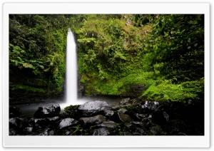 Rainforest Waterfall Ultra HD Wallpaper for 4K UHD Widescreen desktop, tablet & smartphone
