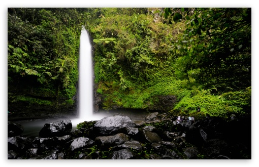Rainforest Waterfall UltraHD Wallpaper for Wide 16:10 5:3 Widescreen WHXGA WQXGA WUXGA WXGA WGA ; 8K UHD TV 16:9 Ultra High Definition 2160p 1440p 1080p 900p 720p ; UHD 16:9 2160p 1440p 1080p 900p 720p ; Standard 4:3 5:4 3:2 Fullscreen UXGA XGA SVGA QSXGA SXGA DVGA HVGA HQVGA ( Apple PowerBook G4 iPhone 4 3G 3GS iPod Touch ) ; Smartphone 16:9 3:2 5:3 2160p 1440p 1080p 900p 720p DVGA HVGA HQVGA ( Apple PowerBook G4 iPhone 4 3G 3GS iPod Touch ) WGA ; Tablet 1:1 ; iPad 1/2/Mini ; Mobile 4:3 5:3 3:2 16:9 5:4 - UXGA XGA SVGA WGA DVGA HVGA HQVGA ( Apple PowerBook G4 iPhone 4 3G 3GS iPod Touch ) 2160p 1440p 1080p 900p 720p QSXGA SXGA ;