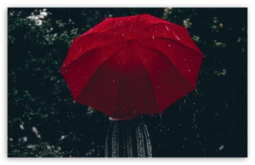 Raining Aesthetic Ultra Hd Desktop Background Wallpaper For