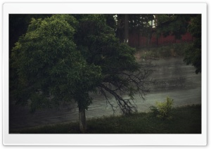 Rainy Day HD Wide Wallpaper for Widescreen