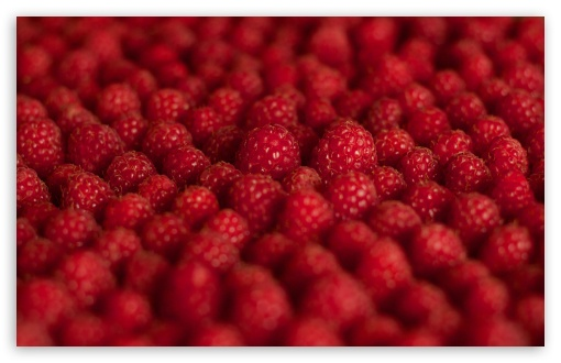 Raspberries ❤ 4K UHD Wallpaper for Wide 16:10 5:3 Widescreen WHXGA WQXGA WUXGA WXGA WGA ; 4K UHD 16:9 Ultra High Definition 2160p 1440p 1080p 900p 720p ; UHD 16:9 2160p 1440p 1080p 900p 720p ; Standard 4:3 5:4 3:2 Fullscreen UXGA XGA SVGA QSXGA SXGA DVGA HVGA HQVGA ( Apple PowerBook G4 iPhone 4 3G 3GS iPod Touch ) ; Tablet 1:1 ; iPad 1/2/Mini ; Mobile 4:3 5:3 3:2 16:9 5:4 - UXGA XGA SVGA WGA DVGA HVGA HQVGA ( Apple PowerBook G4 iPhone 4 3G 3GS iPod Touch ) 2160p 1440p 1080p 900p 720p QSXGA SXGA ; Dual 16:10 5:3 16:9 4:3 5:4 WHXGA WQXGA WUXGA WXGA WGA 2160p 1440p 1080p 900p 720p UXGA XGA SVGA QSXGA SXGA ;