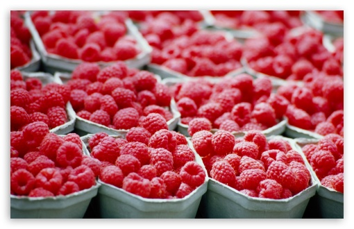 Raspberries - Food HD wallpaper for Wide 16:10 5:3 Widescreen WHXGA WQXGA WUXGA WXGA WGA ; HD 16:9 High Definition WQHD QWXGA 1080p 900p 720p QHD nHD ; Standard 4:3 5:4 3:2 Fullscreen UXGA XGA SVGA QSXGA SXGA DVGA HVGA HQVGA devices ( Apple PowerBook G4 iPhone 4 3G 3GS iPod Touch ) ; Tablet 1:1 ; iPad 1/2/Mini ; Mobile 4:3 5:3 3:2 16:9 5:4 - UXGA XGA SVGA WGA DVGA HVGA HQVGA devices ( Apple PowerBook G4 iPhone 4 3G 3GS iPod Touch ) WQHD QWXGA 1080p 900p 720p QHD nHD QSXGA SXGA ; Dual 16:10 5:3 16:9 4:3 5:4 WHXGA WQXGA WUXGA WXGA WGA WQHD QWXGA 1080p 900p 720p QHD nHD UXGA XGA SVGA QSXGA SXGA ;
