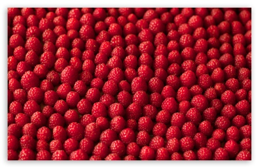 Raspberries, Bokeh ❤ 4K UHD Wallpaper for Wide 16:10 5:3 Widescreen WHXGA WQXGA WUXGA WXGA WGA ; 4K UHD 16:9 Ultra High Definition 2160p 1440p 1080p 900p 720p ; UHD 16:9 2160p 1440p 1080p 900p 720p ; Standard 4:3 5:4 3:2 Fullscreen UXGA XGA SVGA QSXGA SXGA DVGA HVGA HQVGA ( Apple PowerBook G4 iPhone 4 3G 3GS iPod Touch ) ; Tablet 1:1 ; iPad 1/2/Mini ; Mobile 4:3 5:3 3:2 16:9 5:4 - UXGA XGA SVGA WGA DVGA HVGA HQVGA ( Apple PowerBook G4 iPhone 4 3G 3GS iPod Touch ) 2160p 1440p 1080p 900p 720p QSXGA SXGA ; Dual 16:10 5:3 16:9 4:3 5:4 WHXGA WQXGA WUXGA WXGA WGA 2160p 1440p 1080p 900p 720p UXGA XGA SVGA QSXGA SXGA ;