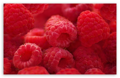 Raspberries Macro HD wallpaper for Wide 16:10 5:3 Widescreen WHXGA WQXGA WUXGA WXGA WGA ; HD 16:9 High Definition WQHD QWXGA 1080p 900p 720p QHD nHD ; Standard 4:3 5:4 3:2 Fullscreen UXGA XGA SVGA QSXGA SXGA DVGA HVGA HQVGA devices ( Apple PowerBook G4 iPhone 4 3G 3GS iPod Touch ) ; iPad 1/2/Mini ; Mobile 4:3 5:3 3:2 16:9 5:4 - UXGA XGA SVGA WGA DVGA HVGA HQVGA devices ( Apple PowerBook G4 iPhone 4 3G 3GS iPod Touch ) WQHD QWXGA 1080p 900p 720p QHD nHD QSXGA SXGA ;
