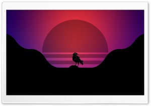 Raven HD Wide Wallpaper for Widescreen