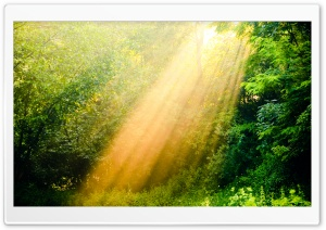 Rays Of Light HD Wide Wallpaper for Widescreen