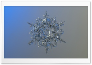Real Snowflake Background HD Wide Wallpaper for Widescreen