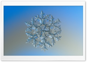 Real Snowflake Under Microscope HD Wide Wallpaper for Widescreen