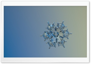 Real Snowflake Up Close Clear HD Wide Wallpaper for Widescreen