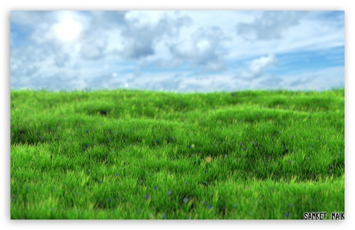 Realistic Grass ❤ 4K UHD Wallpaper for Wide 16:10 5:3 Widescreen WHXGA WQXGA WUXGA WXGA WGA ; 4K UHD 16:9 Ultra High Definition 2160p 1440p 1080p 900p 720p ; Standard 4:3 5:4 3:2 Fullscreen UXGA XGA SVGA QSXGA SXGA DVGA HVGA HQVGA ( Apple PowerBook G4 iPhone 4 3G 3GS iPod Touch ) ; Tablet 1:1 ; iPad 1/2/Mini ; Mobile 4:3 5:3 3:2 16:9 5:4 - UXGA XGA SVGA WGA DVGA HVGA HQVGA ( Apple PowerBook G4 iPhone 4 3G 3GS iPod Touch ) 2160p 1440p 1080p 900p 720p QSXGA SXGA ;