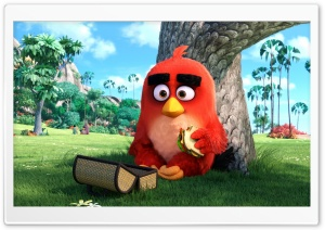 Red Angry Birds Movie HD Wide Wallpaper for Widescreen