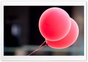 Red Balloons HD Wide Wallpaper for Widescreen