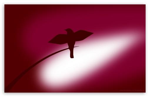 Red Bird ❤ 4K UHD Wallpaper for Wide 16:10 5:3 Widescreen WHXGA WQXGA WUXGA WXGA WGA ; 4K UHD 16:9 Ultra High Definition 2160p 1440p 1080p 900p 720p ; Mobile 5:3 16:9 - WGA 2160p 1440p 1080p 900p 720p ;