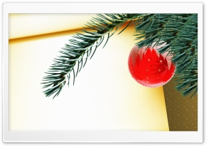 Red Christmas Ball Hanging On Tree Branch HD Wide Wallpaper for Widescreen