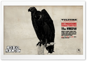Red Dead Redemption Vulture HD Wide Wallpaper for 4K UHD Widescreen desktop & smartphone