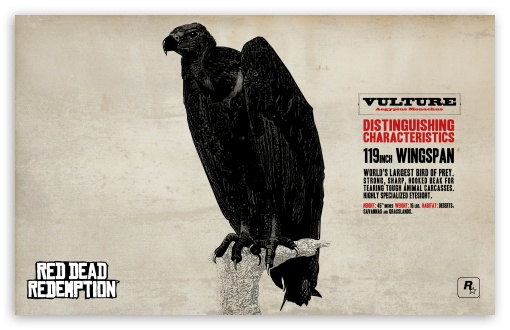 Red Dead Redemption Vulture HD wallpaper for Wide 16:10 5:3 Widescreen WHXGA WQXGA WUXGA WXGA WGA ; HD 16:9 High Definition WQHD QWXGA 1080p 900p 720p QHD nHD ; Standard 4:3 5:4 3:2 Fullscreen UXGA XGA SVGA QSXGA SXGA DVGA HVGA HQVGA devices ( Apple PowerBook G4 iPhone 4 3G 3GS iPod Touch ) ; iPad 1/2/Mini ; Mobile 4:3 5:3 3:2 16:9 5:4 - UXGA XGA SVGA WGA DVGA HVGA HQVGA devices ( Apple PowerBook G4 iPhone 4 3G 3GS iPod Touch ) WQHD QWXGA 1080p 900p 720p QHD nHD QSXGA SXGA ;