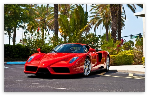 Red Ferrari Enzo Supercar ❤ 4K UHD Wallpaper for Wide 16:10 5:3 Widescreen WHXGA WQXGA WUXGA WXGA WGA ; UltraWide 21:9 24:10 ; 4K UHD 16:9 Ultra High Definition 2160p 1440p 1080p 900p 720p ; UHD 16:9 2160p 1440p 1080p 900p 720p ; Standard 4:3 5:4 3:2 Fullscreen UXGA XGA SVGA QSXGA SXGA DVGA HVGA HQVGA ( Apple PowerBook G4 iPhone 4 3G 3GS iPod Touch ) ; Tablet 1:1 ; iPad 1/2/Mini ; Mobile 4:3 5:3 3:2 16:9 5:4 - UXGA XGA SVGA WGA DVGA HVGA HQVGA ( Apple PowerBook G4 iPhone 4 3G 3GS iPod Touch ) 2160p 1440p 1080p 900p 720p QSXGA SXGA ; Dual 16:10 5:3 16:9 4:3 5:4 3:2 WHXGA WQXGA WUXGA WXGA WGA 2160p 1440p 1080p 900p 720p UXGA XGA SVGA QSXGA SXGA DVGA HVGA HQVGA ( Apple PowerBook G4 iPhone 4 3G 3GS iPod Touch ) ; Triple 4:3 5:4 UXGA XGA SVGA QSXGA SXGA ;