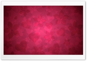 Red Floral Pattern HD Wide Wallpaper for Widescreen