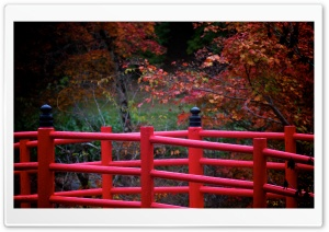 Red Japanese Bridge HD Wide Wallpaper for Widescreen